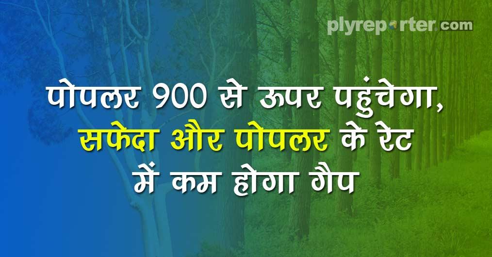 20210127234314_62-POPLAR_hindi.jpg
