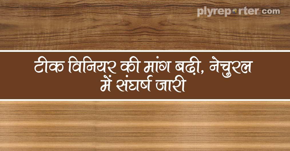 20210224033136_46-TEAK-VENEER-hindi.jpg