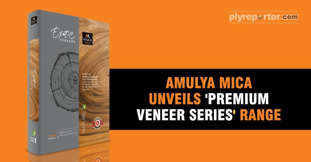 Amulya-Mica-veneers.jpg