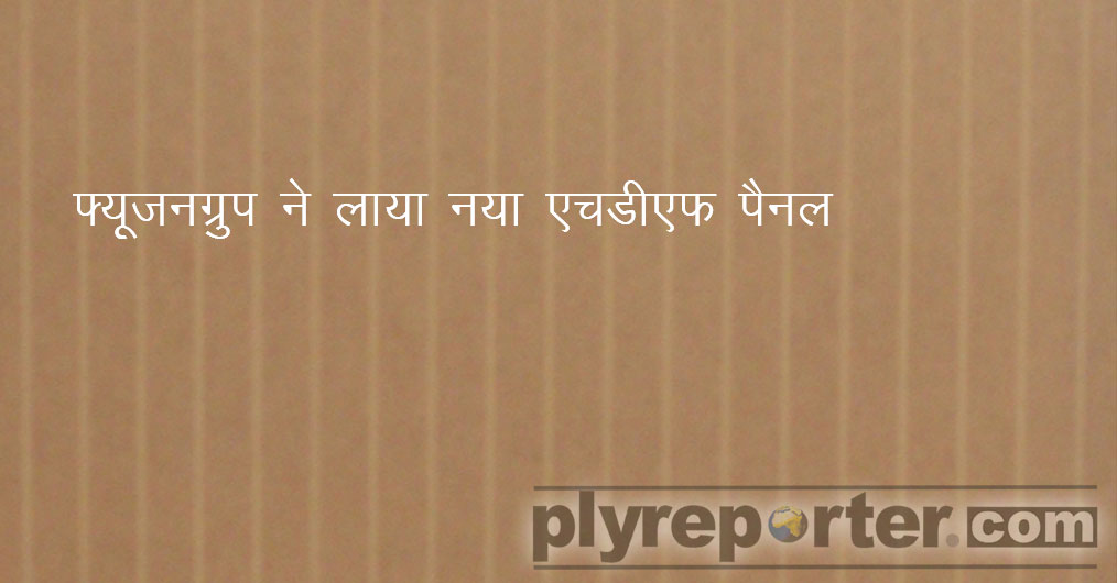 HDF-Panel-hindi.jpg