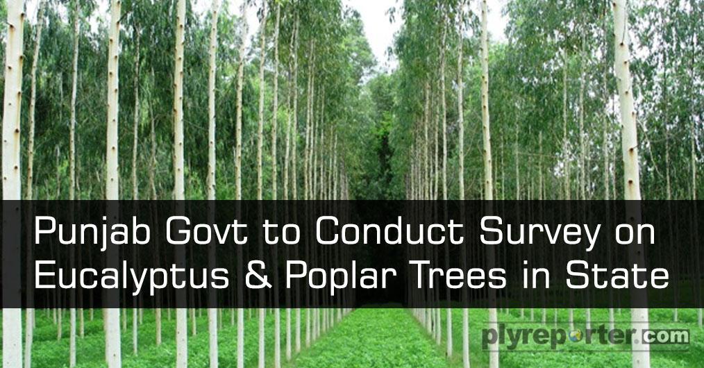 Punjab-to-Conduct-Survey (1).jpg