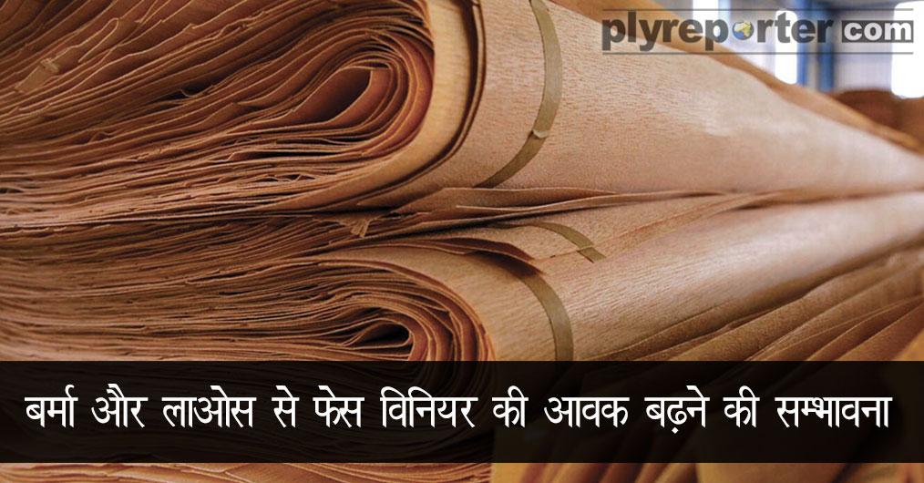 face-veneer-hindi.jpg