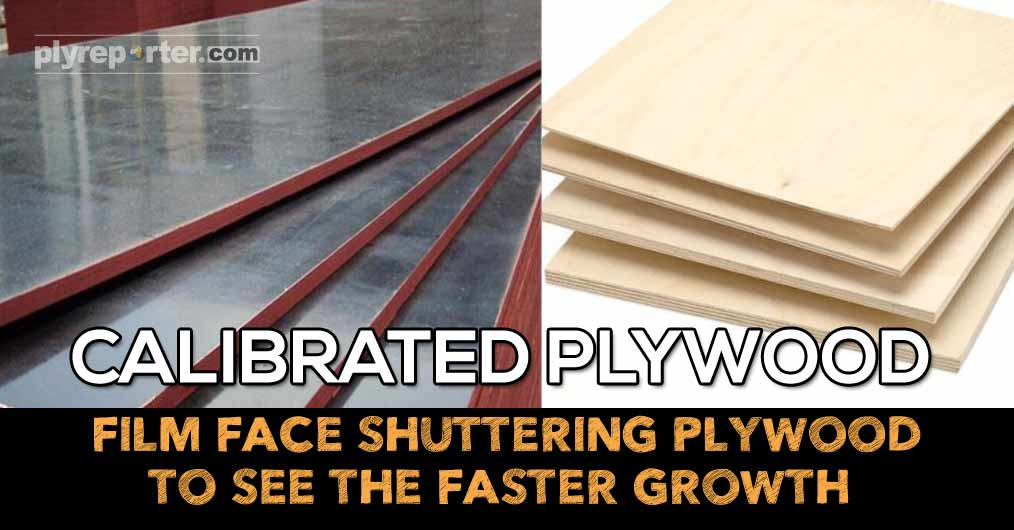 Calibrated Plywood Film Face Shuttering Plywood to See the Faster Growth