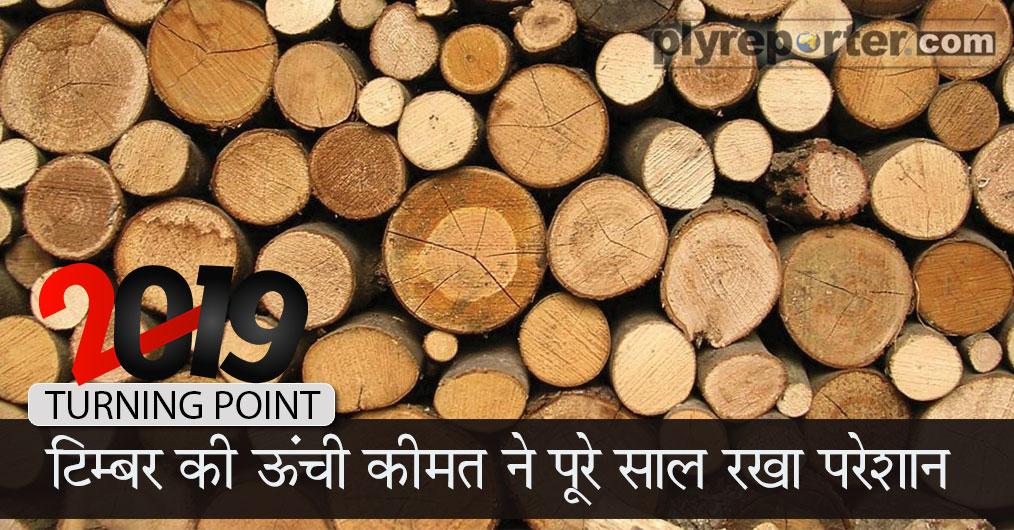 tp-timber-hindi.jpg