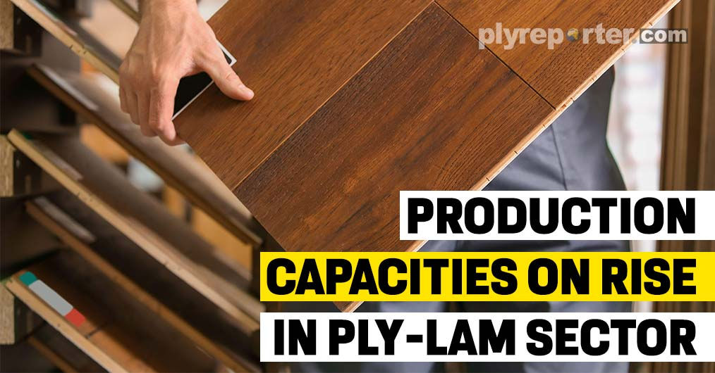 Ply-Lam Sector