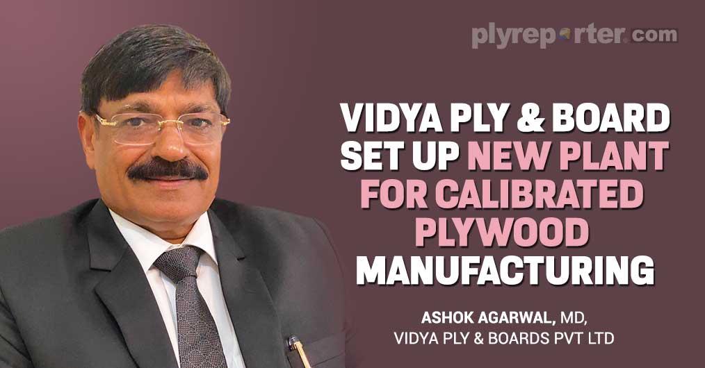 Vidya Ply & Board
