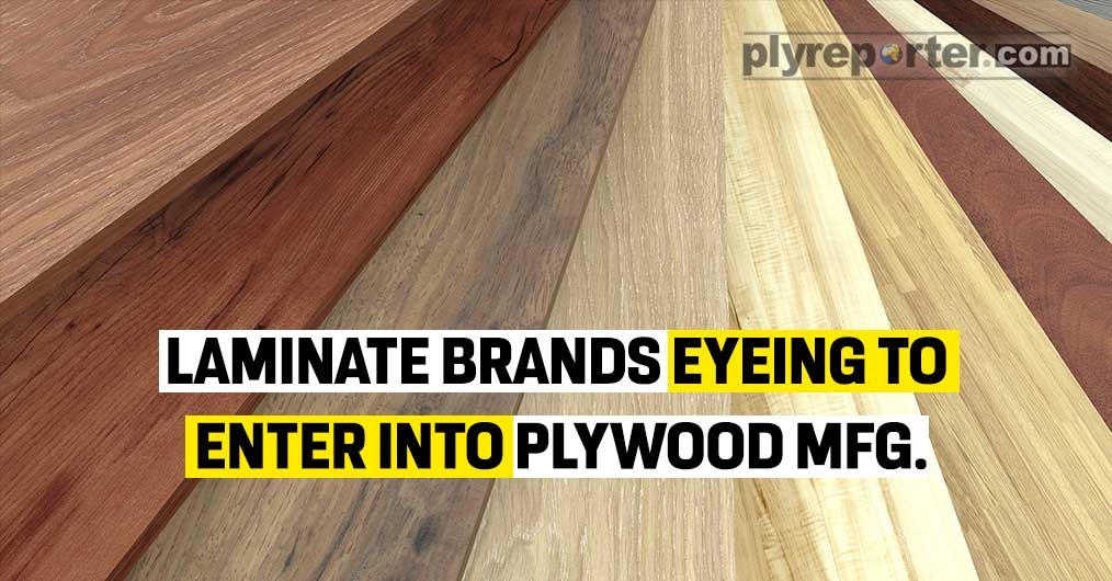wood panel products
