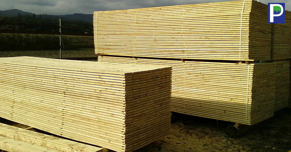 Logs & Sawn Timber Import Down Significantly