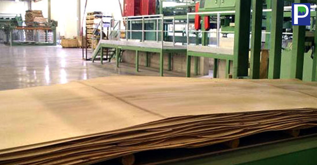Growing demand of good quality Calibrated plywood is making manufacturers to install 'Core Veneer Composer' to cater the demand. It has been reported that more than 12 manufacturing establishments in India has set up core veneer composer machine seei