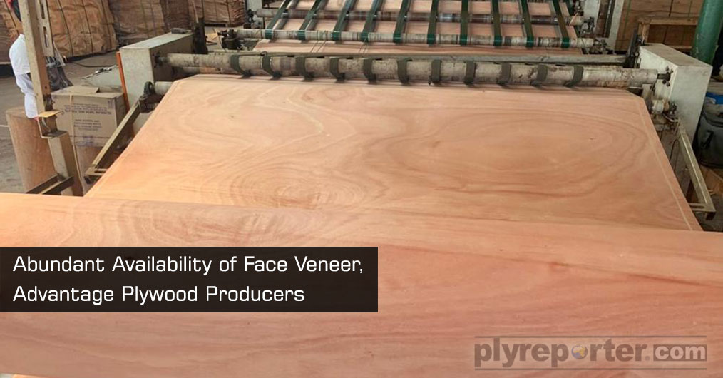 Plywood industry is now in comfortable state for procurement of face veneers. In present scenario and what look onwards is, Market has abundant stock of face veneers