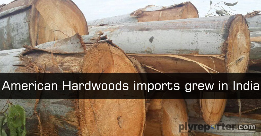 According to the latest statistics, U.S. hardwood lumber shipped to India from January to August of this year increased by 196 percent in volume to 2,842 cubic meters and by 96 percent in value to USD 1.65 million.