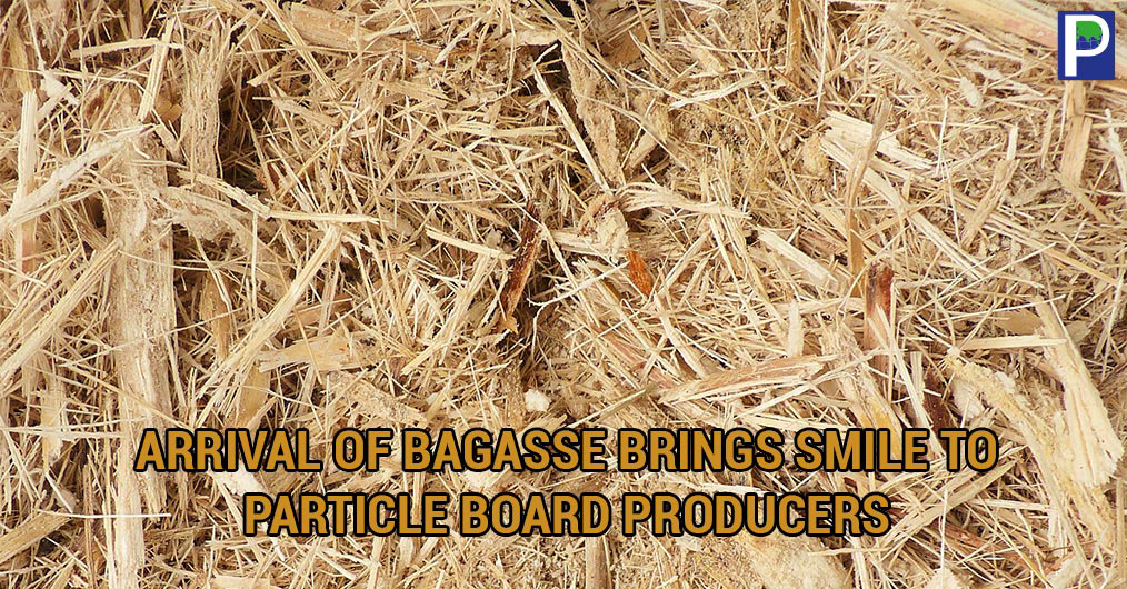 With start of Sugarcane harvesting season, the supply of Baggase has started arriving to Particle Board industry located in Gujarat and Maharashtra. Particle Board producers are in hurry forgetting access to raw materials and stocking as much possibl
