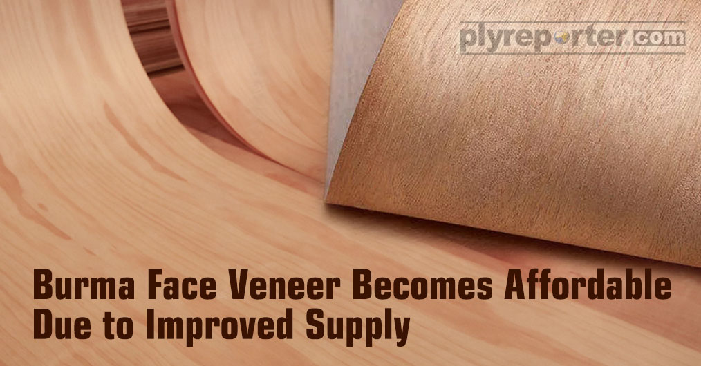 Face veneer procurement is no more challenging, because industry is getting sufficient quantity of different species of face from Gabon, China, Indonesia, and now affordable Burma.