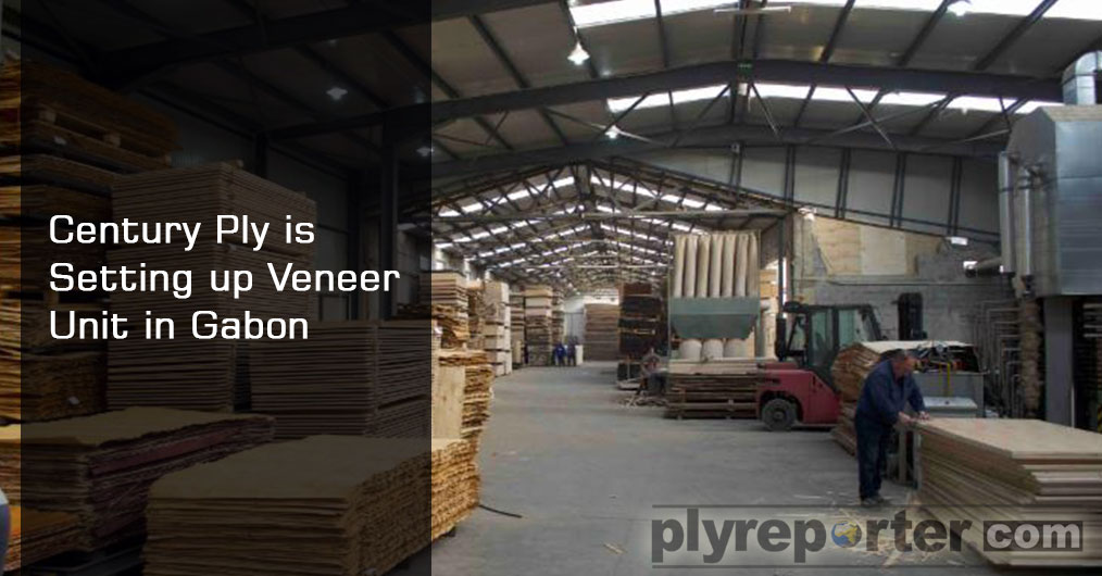After Greenply, another big plywood brand Century Ply is also going to set up face veneer manufacturing establishment in Gabon Special Economic Zone.