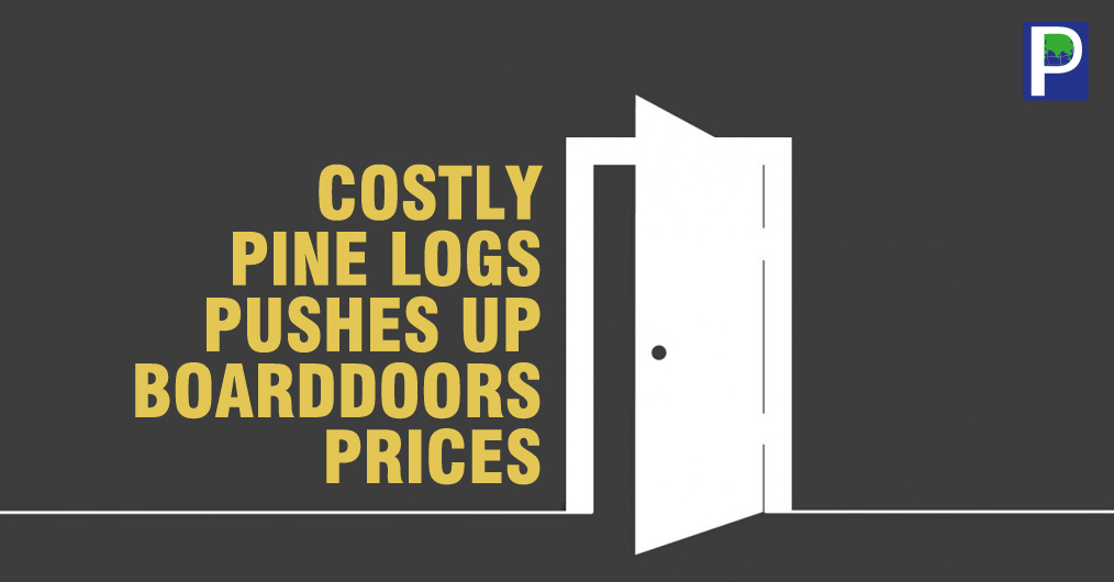 High imported Pine logs prices have been started affecting the cost of Pine Block Boards and Flush Doors in India. The report from Kandla confirms that the Pine logs prices have been increasing since last 2-3 months and it has gone up by 15 %, which