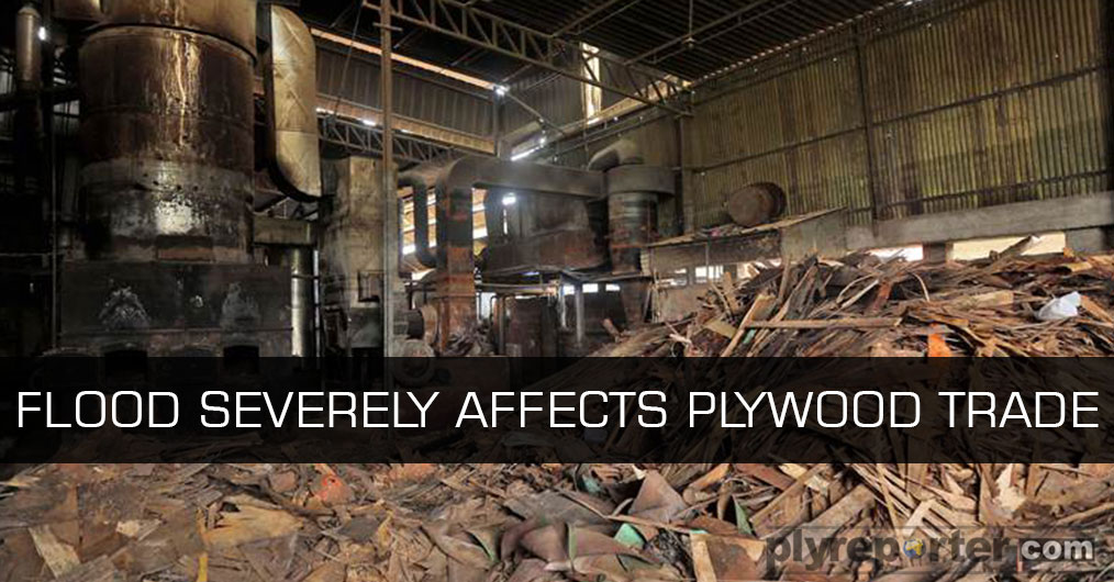 The wood panel industry and trade, has been already suffering from payment bottleneck due to cash crunch, has hit by another trouble due to flood and water logging in go-downs, showrooms, factories and stock points.