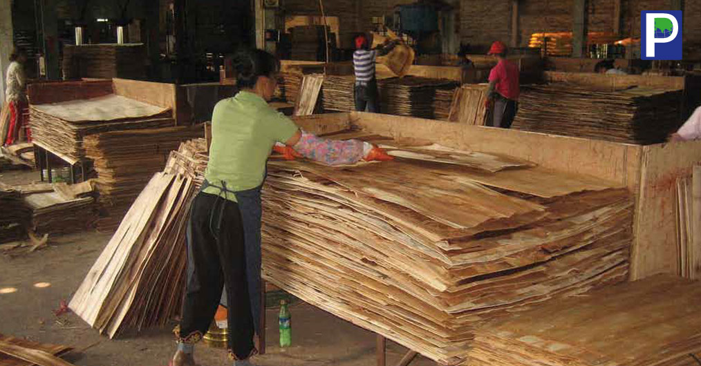 Plywood industry has entered into cut- throat competition mode. India has around 2800 operational wood panel processing factories practically