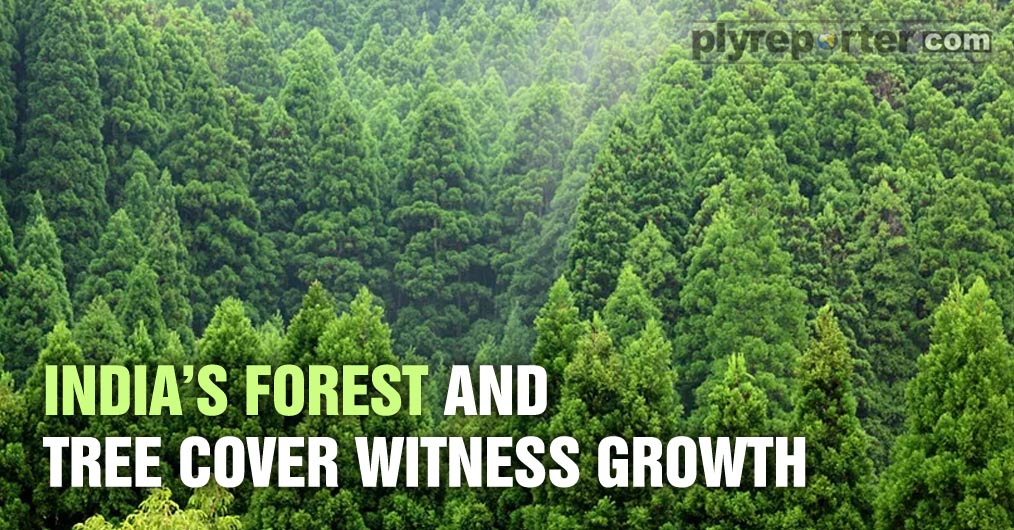 The Union Minister for Environment, Forest and Climate Change, Shri Prakash Javadekar informed that India is among few countries in the world where forest cover is consistently increasing.