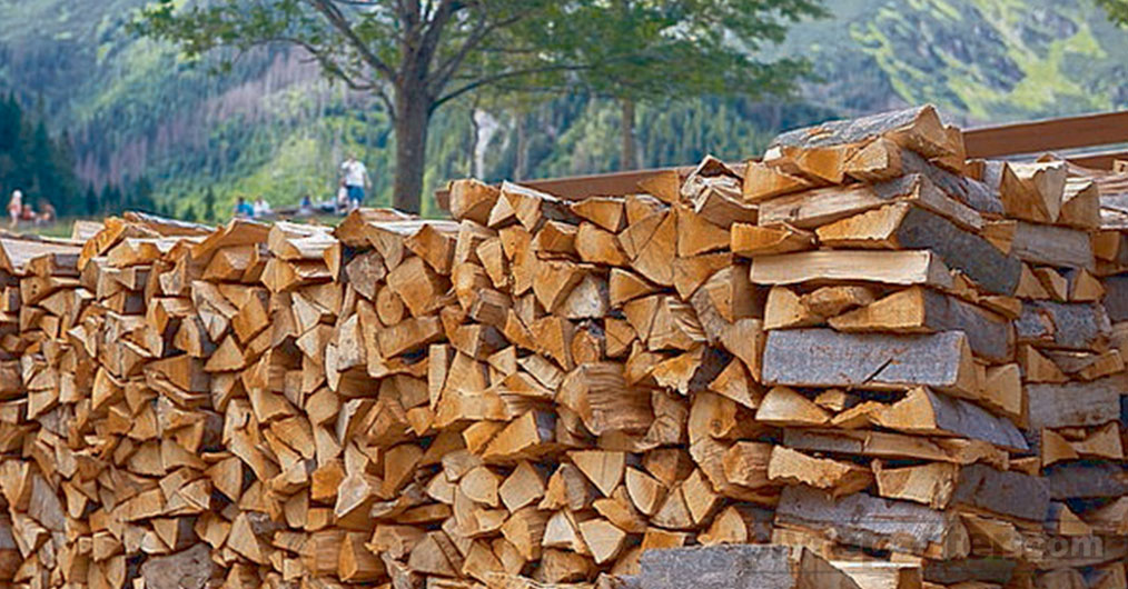Sawn timber imports have shrunk by 7 percent compared to last years. According to the report of DGCI&S, Sawn timber import reduced by approx. Rs 130 crore in 2016-17 from Rs 1933 crore in FY 2015-16.