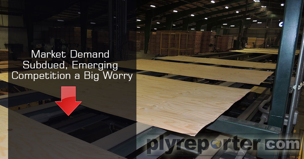 The market for plywood and panel products is becoming fierce and throat cutting as reported by Ply Reporter correspondents from across the country.