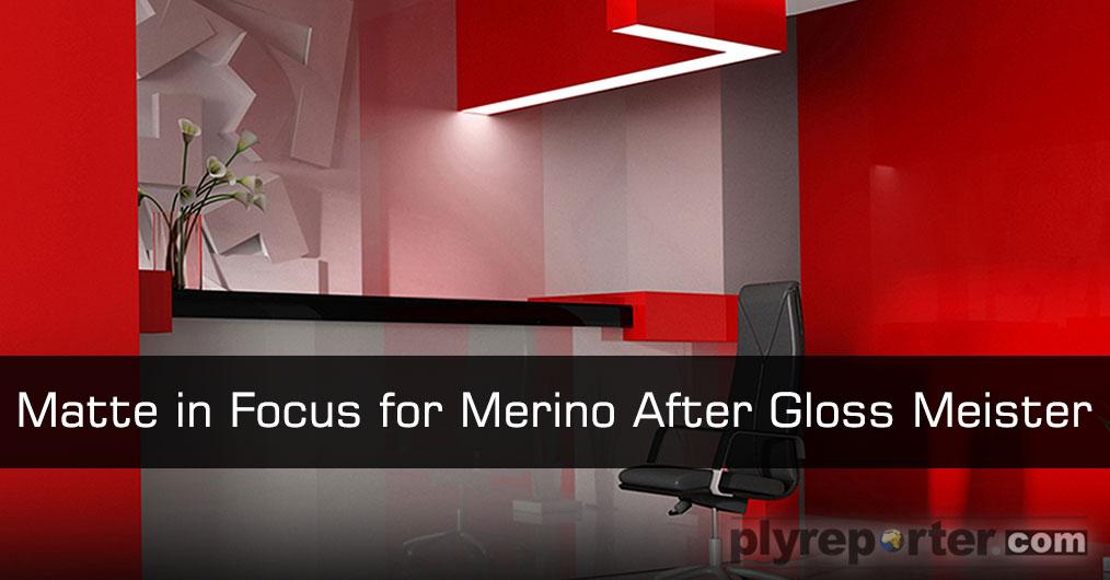 Matte-in-Focus-for-Merino-Gloss-Meister.jpg