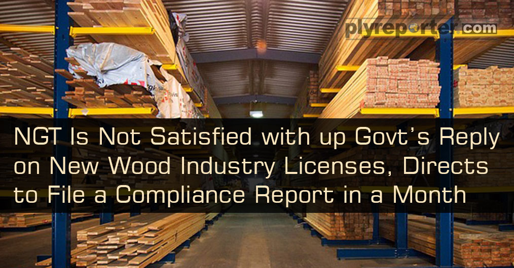 After going through the report filed by the UP Forest Department's High Power Committee on new licence issued for establishment of wood based industries in the state, NGT