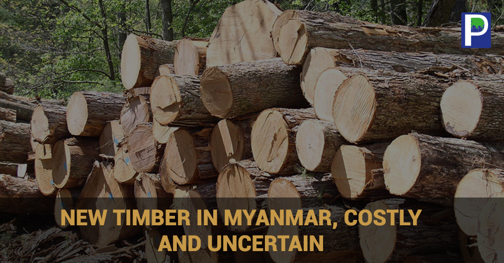 A year-long ban on logging across Myanmar was lifted at the end of March 2017, and now the Myanmar government says it is on its way to bringing verifiably legal timber to the international market.