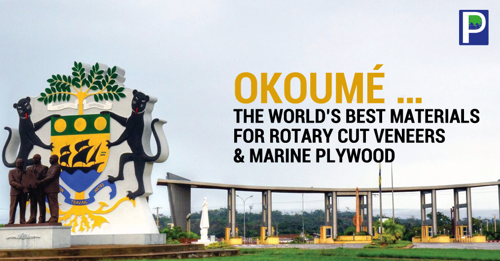 Okoumé is recognised as one of the world's best materials for rotary cut veneers and face veneers, peeled from Okoumé are in high demand in Europe, China and USA, and its demand is gradually picking up in India as well.