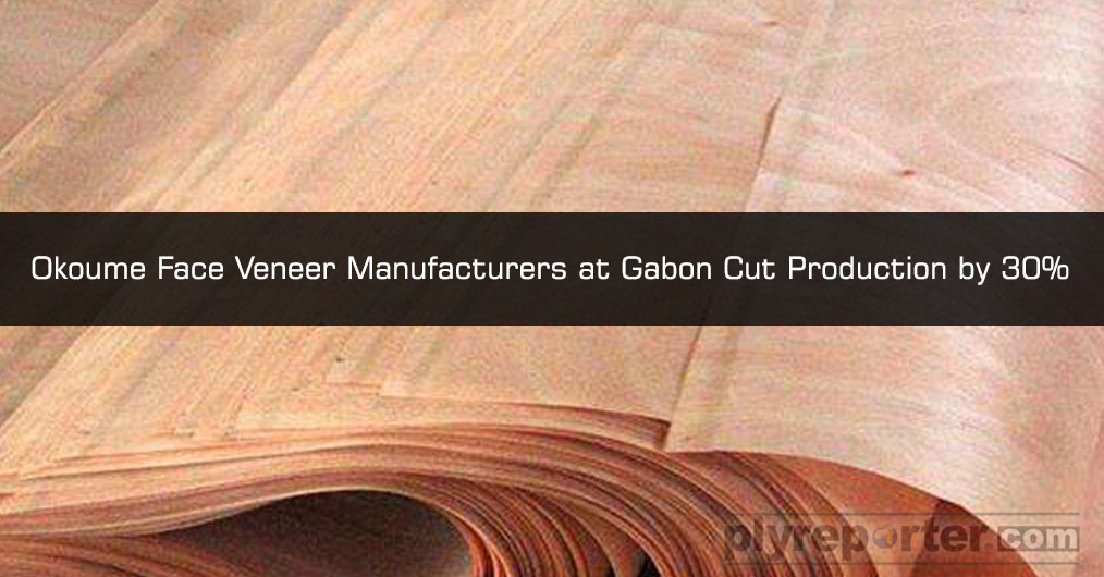 Gabon SEZ based Face Veneer manufacturers have collectively decided to slowdown their production by 30 % for a month to halt the reducing prices of Okoume veneer in Indian market