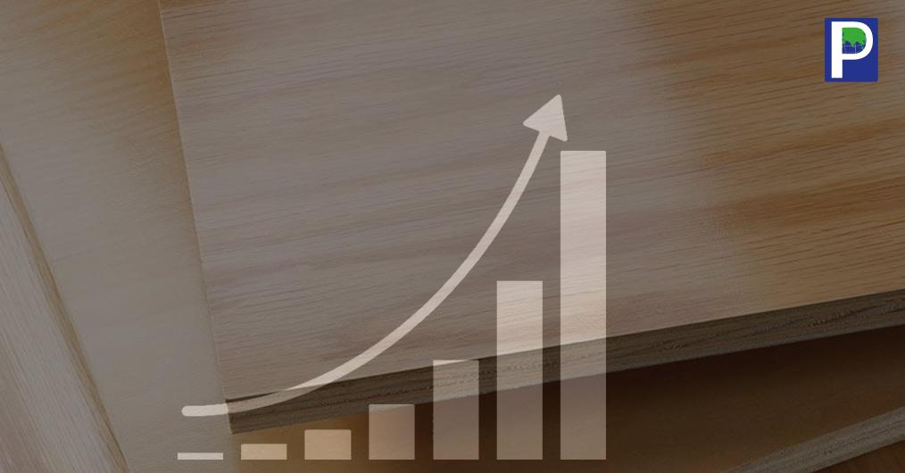 गेहूं की फसल के मौसम के दौरान प्लांटेशन लॉग की आपूर्ति बाधित हुई जिससे लकड़ी की कीमतों में वृद्धि हुई है। इस हालात ने अप्रैल महीने के दौरान प्लाई-बोर्ड उत्पादकों को तैयार उत्पादों की दरों में 10 प्रतिशत तक वृद्धि करने के लिए मजबूर किया।