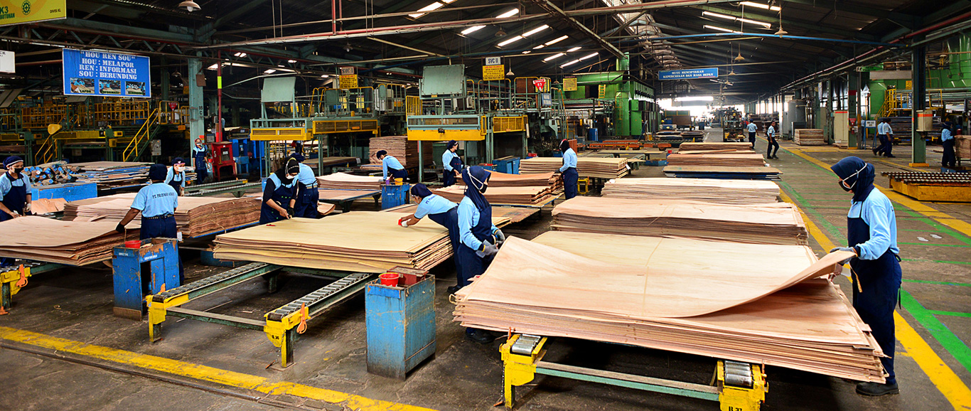 The Indian decorative plywood manufacturers import hardwood base ply from Malaysia, Indonesia and Myanmar for pasting decorative flitches.