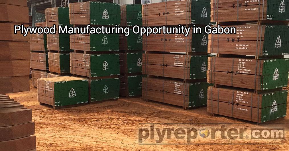 कूमे प्लाइवुड बहुत उच्च गुणवत्ता वाला एक उत्पाद है और यही गैबॉन की विशेषता है। आज प्लाइवुड के उत्पादन के लिए ओकूमे लॉग की मात्रा स्थायी वन प्रबंधन के माध्यम से सीमित है