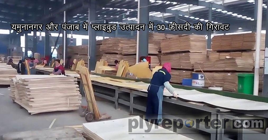 धीमी मांग और लकड़ी की ऊंची कीमतों ने हरियाणा और पंजाब में प्लाइवुड उत्पादकों को सितंबर के दौरान उत्पादन में कटौती करने को मजबूर किया है।