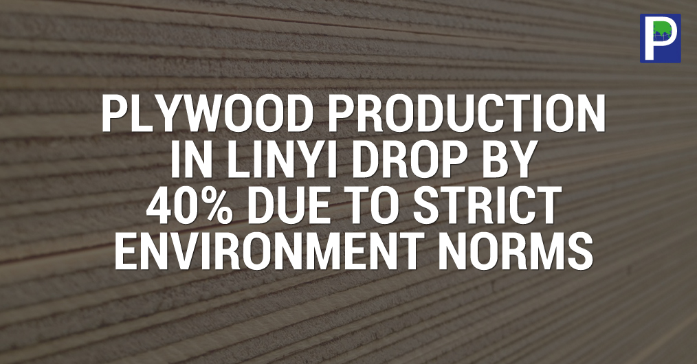 Linyi city of China is known the world biggest hub for plywood manufacturing, having more than 4000 plywood and panel producing establishments. But the recent China Government strict major to control pollution, there are more than 40 % units are comp