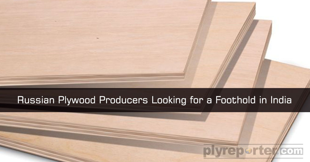 Birch Veneer made plywood from Russia is getting popular among India consumers. Reports say that a number of trade people are importing Birch Plywood