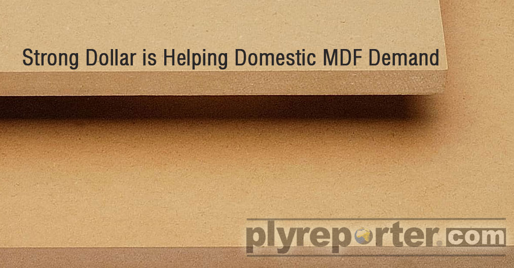 Rocketing dollar prices against Rupee is reported to help domestic MDF manufacturers in taking over imported MDF market. Report from trade hinted that the price gap between imported and domestic MDF prices has been narrowing because the dollar rates