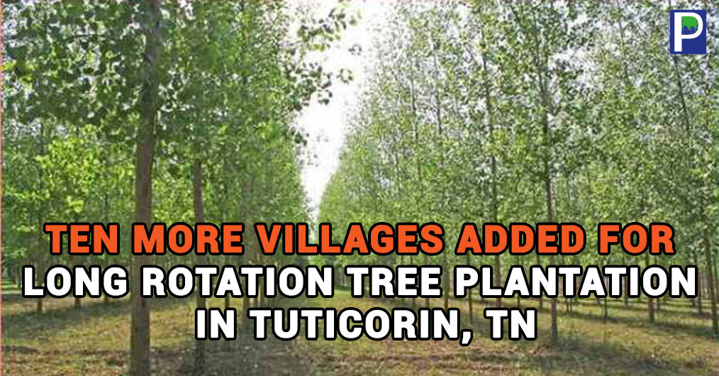 Ten more villages in Tuticorin have been adopted under Tamil Nadu Biodiversity and Greening Project to plant long rotation trees with economic value during this financial year.