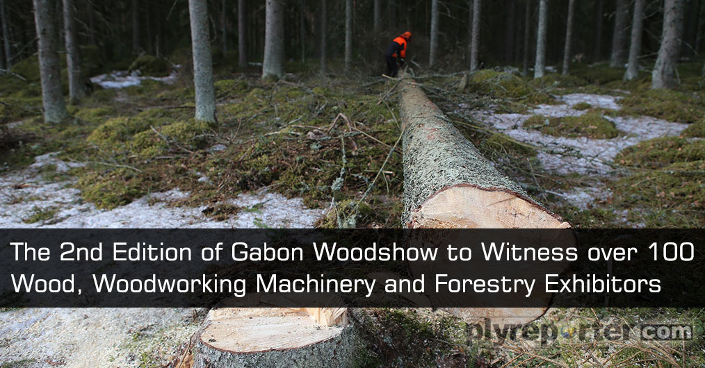 Gabon WoodShow, the leading platform for wood, woodworking machinery and forestry sector in Central and West Africa,