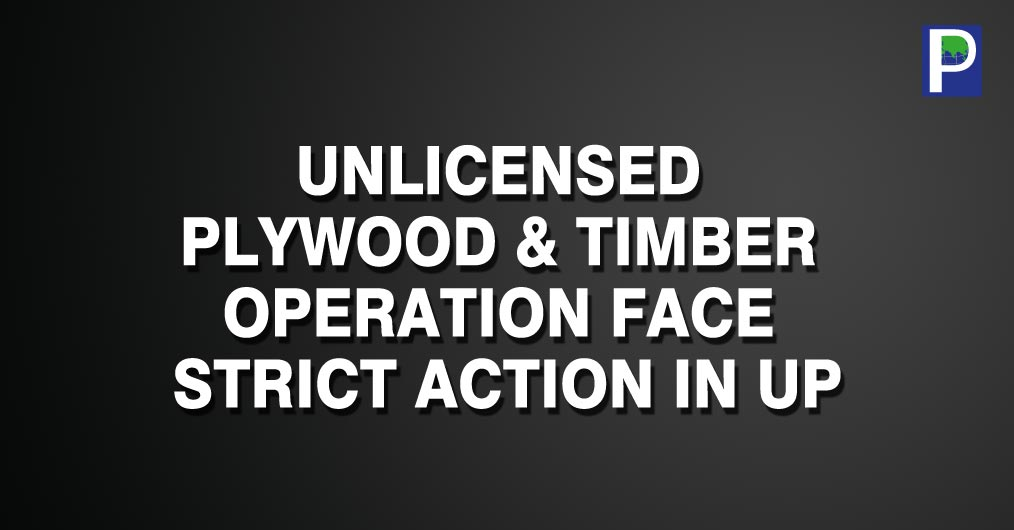 The plywood industry including timber suppliers in Uttar Pradesh are facing strict action from the respective authorities after the tight vigil from newly formed state government. The plywood factories are reportedly getting irregular timber supplies
