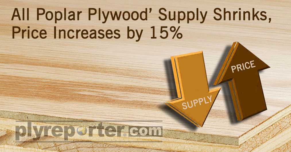 The 'All Poplar Ply' prices have jumped over 15 % in last one month due to rising poplar log prices in North India.