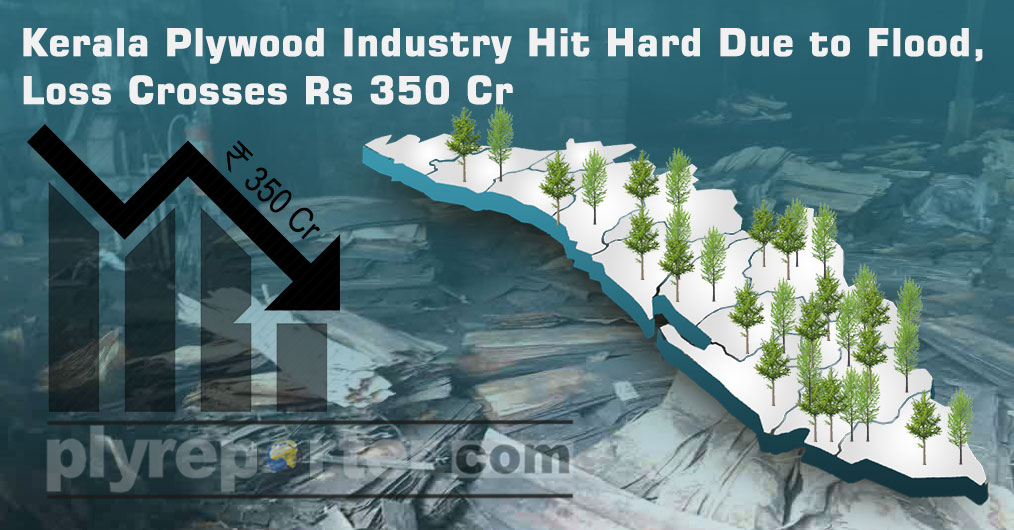 The rain and flood has badly affected the plywood manufacturing in Kerala. The Perumbavoor region is the worst hit area with respect to industrial damage.