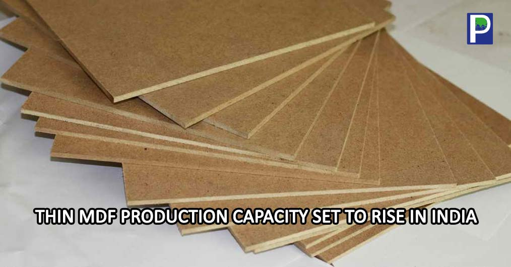According to latest reports, the existing MDF manufacturers such as Shirdi Industry, Rushil Décor, P- decor have planned to enter into thin MDF manufacturing and placed orders for new lines for thin MDF production aiming to begin manufacturing in imm