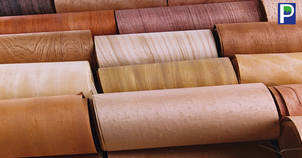 Recent numbers obtained from veneer manufacturers and retailers shows that Decorative natural veneer has maintained its charm among users. Despite emergence of different highlighter products in India decorative veneers have yet again proved to be unb