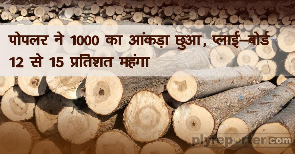 poplar-wood.jpg